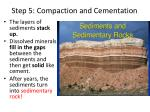 step 5 compaction and cementation
