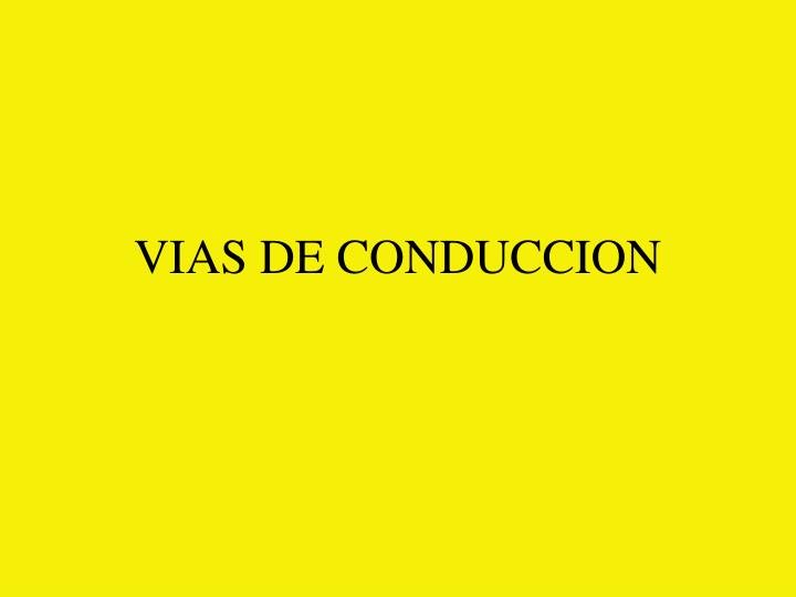 vias de conduccion n.