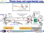 photon beam and experimental area