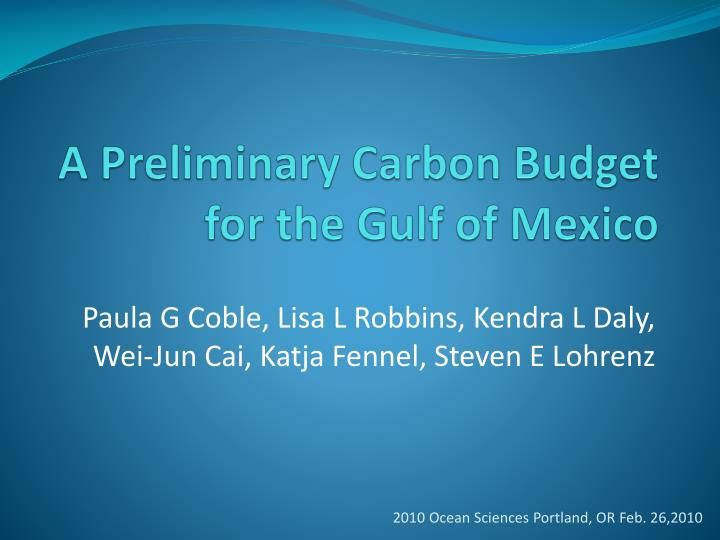 a preliminary carbon budget for the gulf of mexico n.