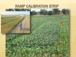 ramp calibration strip