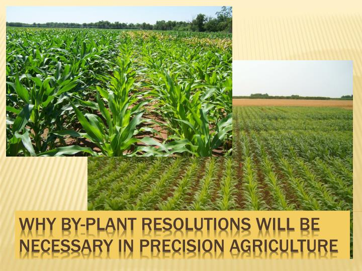 why by plant resolutions will be necessary in precision agriculture n.
