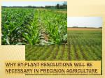 why by plant resolutions will be necessary in precision agriculture