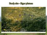 study site sigur plateau