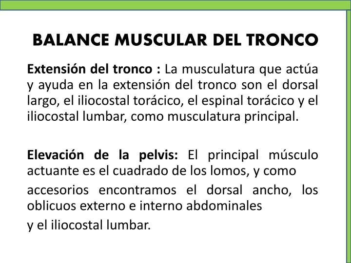 BALANCE MUSCULAR DEL TRONCO