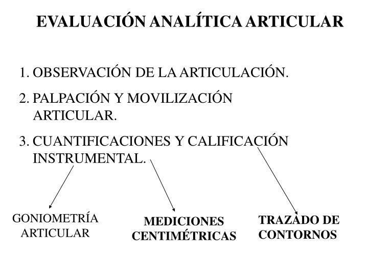 EVALUACIÓN ANALÍTICA ARTICULAR