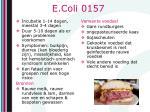 e coli 0157
