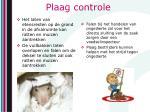 plaag controle2