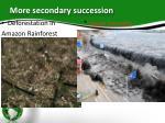 more secondary succession