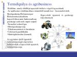 term kp lya s agribusiness
