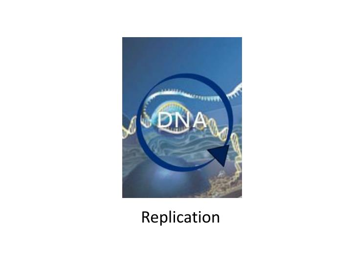 Ppt dna the blueprint of life powerpoint presentation id2248219 dna the blueprint of life slide4 replication malvernweather Images