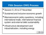 fifth session owg process