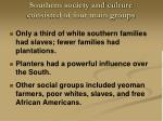 southern society and culture consisted of four main groups