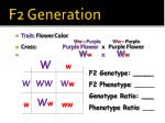 f2 generation
