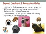 beyond dominant recessive alleles