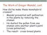the work of gregor mendel cont6