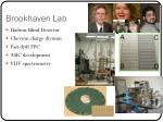 brookhaven lab