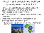 brazil is self proclaimed political spokesperson of the south