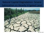natural capital degradation severe salinization on heavily irrigated land