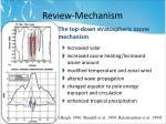 review mechanism
