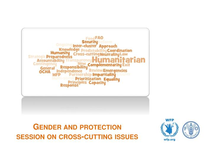 gender and protection session on cross cutting issues n.