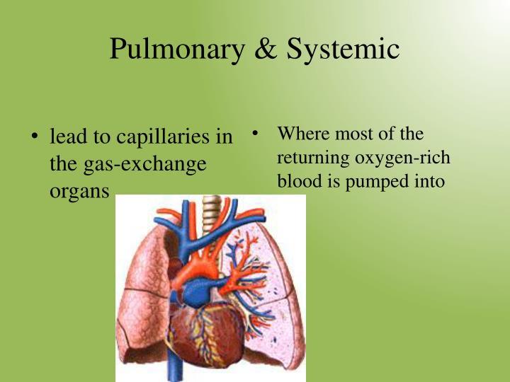 Pulmonary & Systemic