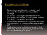 excitation and inhibition