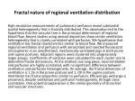 fractal nature of regional ventilation distribution