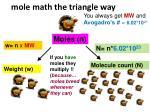 mole math the triangle way
