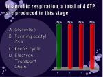 in aerobic respiration a total of 4 atp are produced in this stage