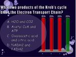 what two products of the kreb s cycle drive the electron transport chain