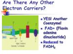 are there any other electron carriers