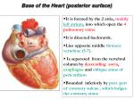 base of the heart posterior surface