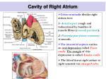 cavity of right atrium