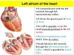 left atrium of the heart