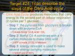 target 24 i can describe the steps of the citric acid cycle