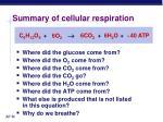 summary of cellular respiration