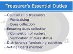 treasurer s essential duties