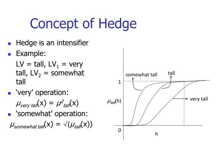 Concept of Hedge