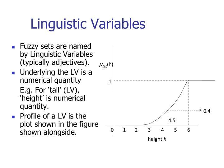 Linguistic Variables