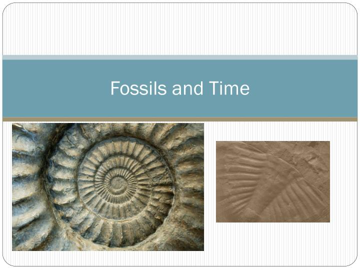 fossils and time n.