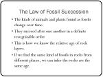 the law of fossil succession