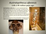 australopithecus afarensis 3 85 2 95 million years ago