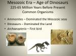 mesozoic era age of dinosaurs 225 65 million years before present common organisms