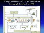 ecological diversification of ordovician fauna increasingl y complex food web