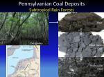 pennsylvanian coal deposits subtropical rain forests