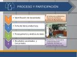 proceso y participaci n