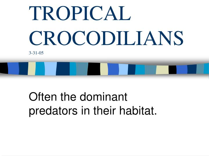 tropical crocodilians 3 31 05 n.