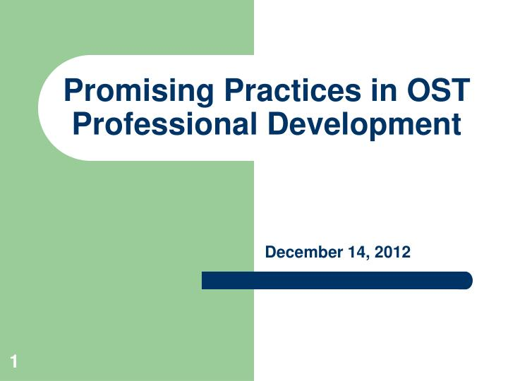 promising practices in ost professional development n.