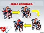ciclo card aco1